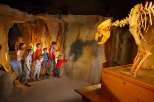 musee ours des caverne entremont le vieu 300x200 - Vos enfants les ont bien mérité ... ces vacances ! # 1 - Hopika - Le guide des sorties eco-friendly sur les 2 Savoie et aux alentours